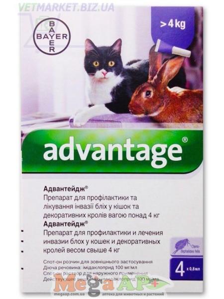 Капли Bayer Адвантейдж 40 от заражений блохами для котов и котят от 4 кг 4 пипетки