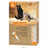 Адвокат для котов до 4 кг