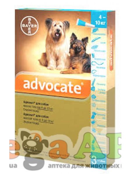 Advocate (Адвокат) капли на холку для собак весом 4 - 10кг